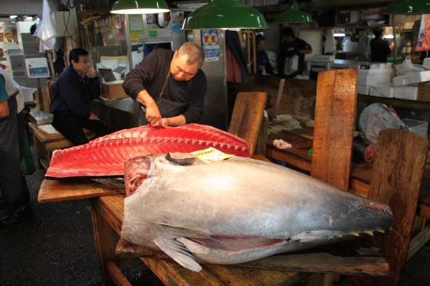 Tsukiji Thon